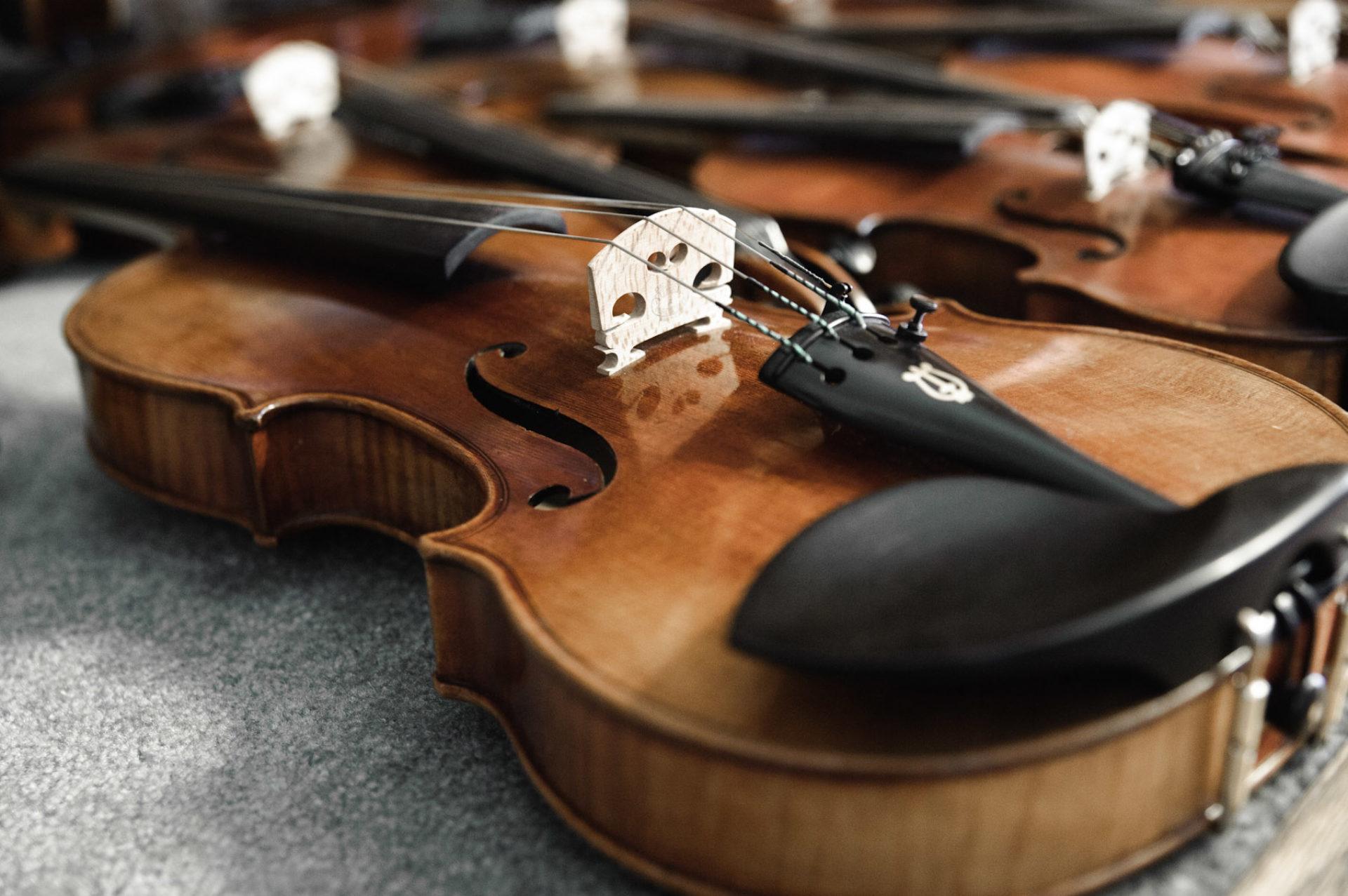 Kamimoto String Instruments